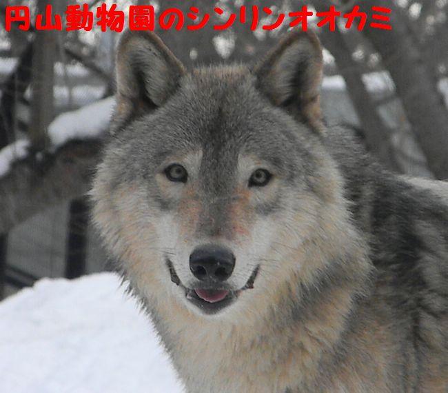 b0014576_0441984.jpg