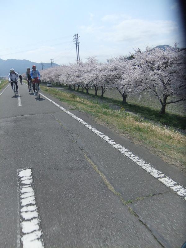 春がやってまいりましてサイクリングに行ってまいりました_b0217782_19463020.jpg