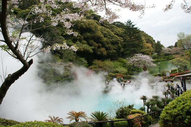 素敵な桜をさがして・・・地獄の桜、王子動物園の桜、青い森鉄道、九州の桜、お城の桜(6/7)_d0181492_21161258.jpg