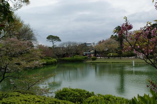 素敵な桜をさがして・・・地獄の桜、王子動物園の桜、青い森鉄道、九州の桜、お城の桜(6/7)_d0181492_21494323.jpg