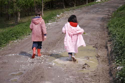 菌の世界~雨上がりのお散歩_f0106597_20102223.jpg