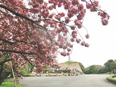 江戸城散歩(江戸の仲間)_c0187004_23384747.jpg