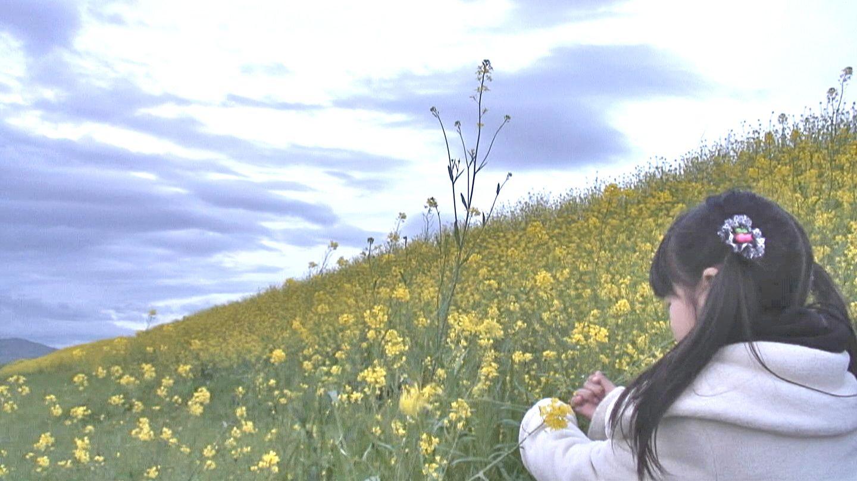 4/21(土) 三島江へ『菜の花』と『レンゲ』を見に行って来ました〜_a0059812_21122876.jpg