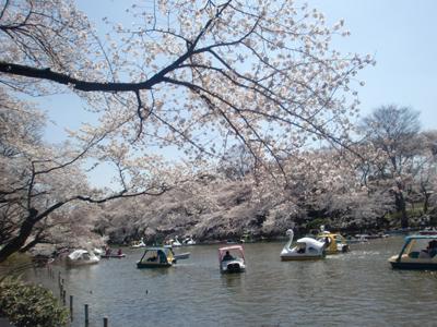 バル風カフェ MISHIMA_b0119719_914288.jpg