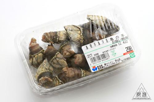 231 松江市 ~亀の手を食らう~_c0211532_23102151.jpg