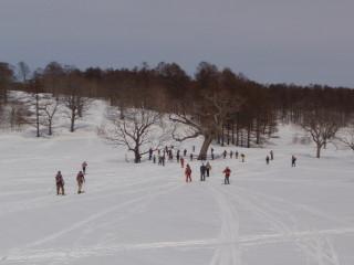 2012 志賀高原~カヤノ平~野沢温泉スキーツアー _a0023246_841335.jpg