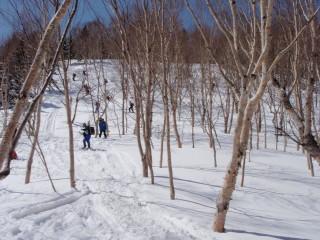 2012 志賀高原~カヤノ平~野沢温泉スキーツアー _a0023246_84565.jpg