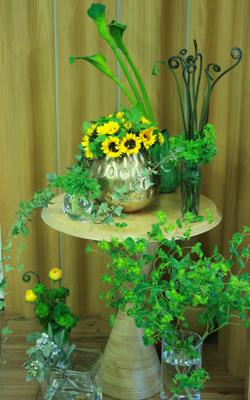 夏物の展示会♫_e0149863_0122558.jpg