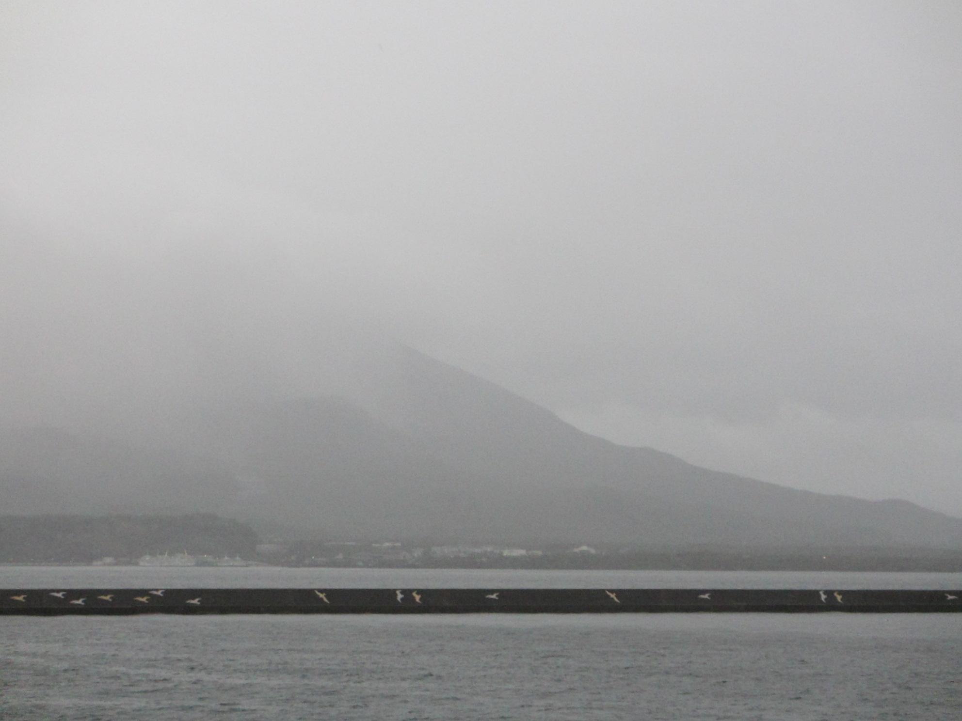 鹿児島帰郷レポート 桜島へ渡る_d0202264_2213256.jpg
