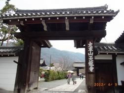 京都~嵯峨中ノ島公園散策_e0195766_22222394.jpg