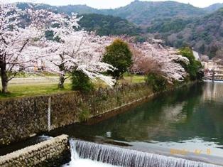 京都~嵯峨中ノ島公園散策_e0195766_22251149.jpg