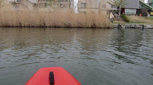 日曜日の公園と水辺_c0249569_22141935.jpg