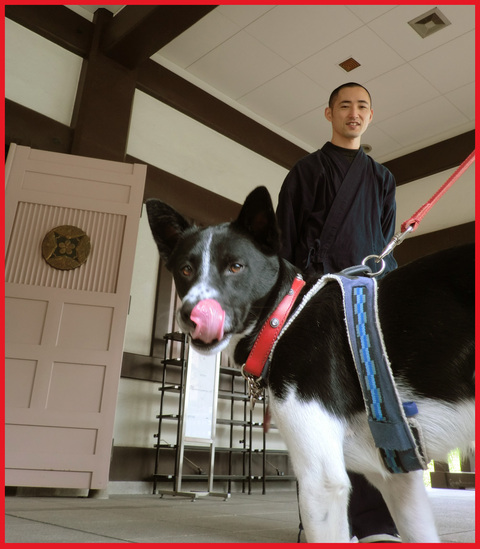 「寺カフェ」へ行こう。神谷町・光明寺で、昼旅気分。_e0236072_16334630.jpg