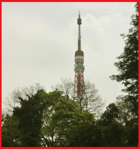 「寺カフェ」へ行こう。神谷町・光明寺で、昼旅気分。_e0236072_16391898.jpg