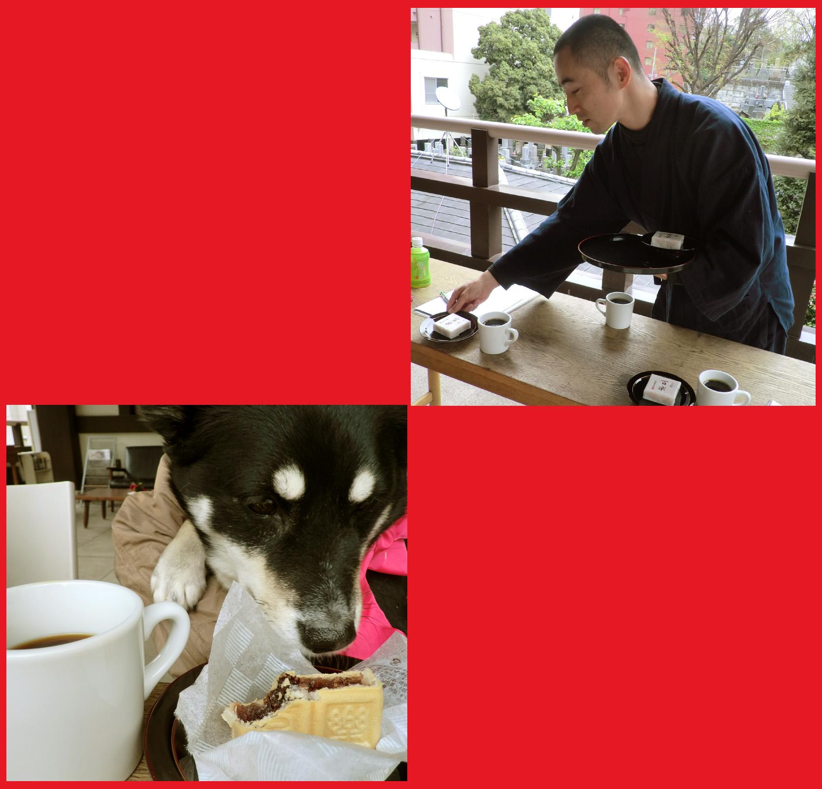 「寺カフェ」へ行こう。神谷町・光明寺で、昼旅気分。_e0236072_16451558.jpg