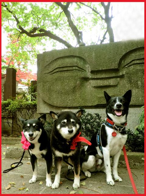 「寺カフェ」へ行こう。神谷町・光明寺で、昼旅気分。_e0236072_1651010.jpg