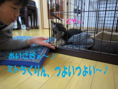 「ミトちくりん」_e0125894_1273577.jpg