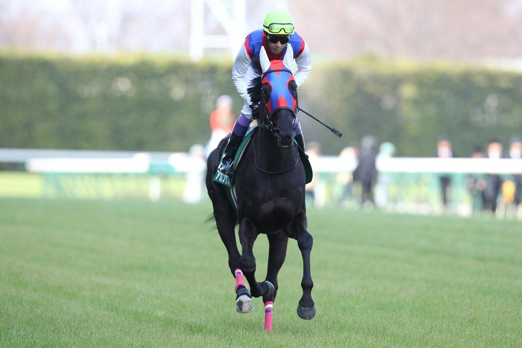 2012年4月21日 福島牝馬S_f0204898_0152747.jpg