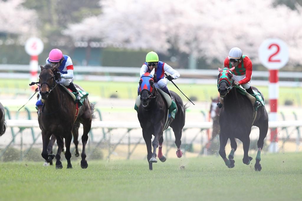 2012年4月21日 福島牝馬S_f0204898_0163466.jpg