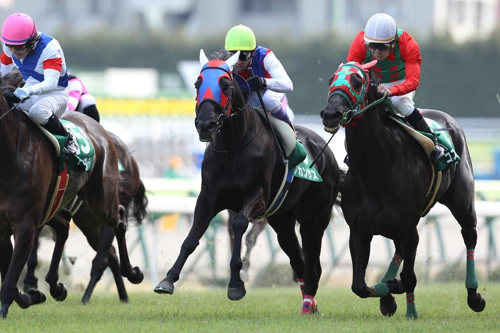 2012年4月21日 福島牝馬S_f0204898_0164571.jpg