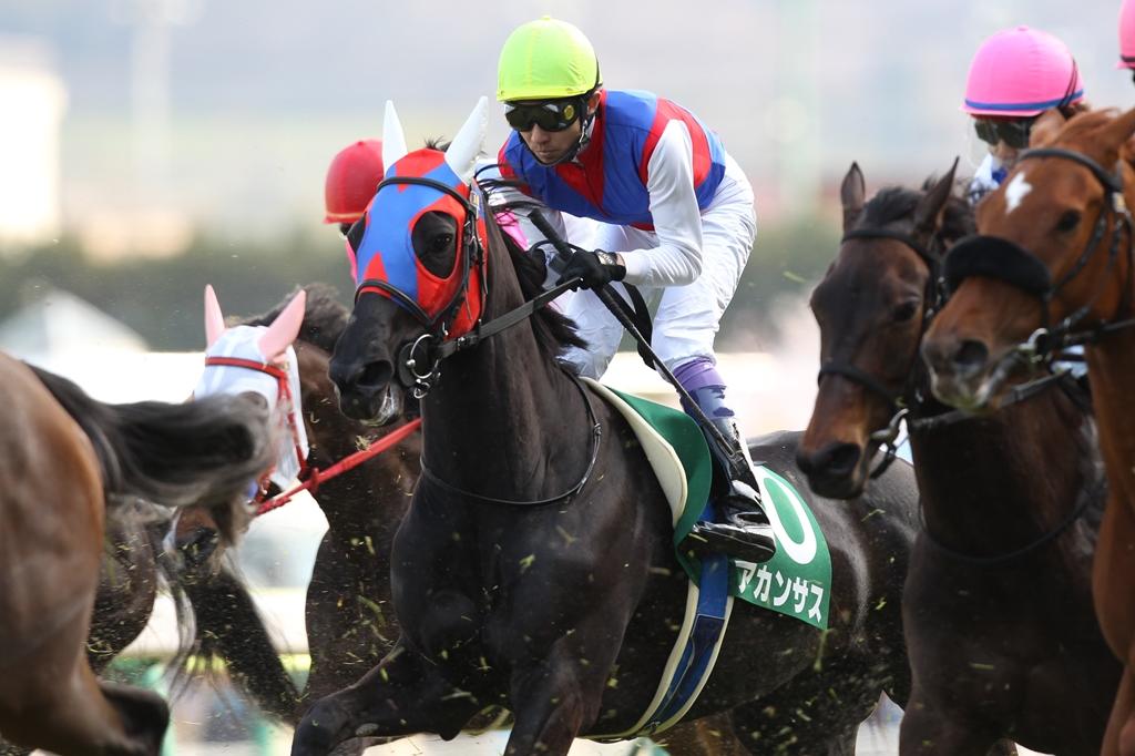 2012年4月21日 福島牝馬S_f0204898_016871.jpg