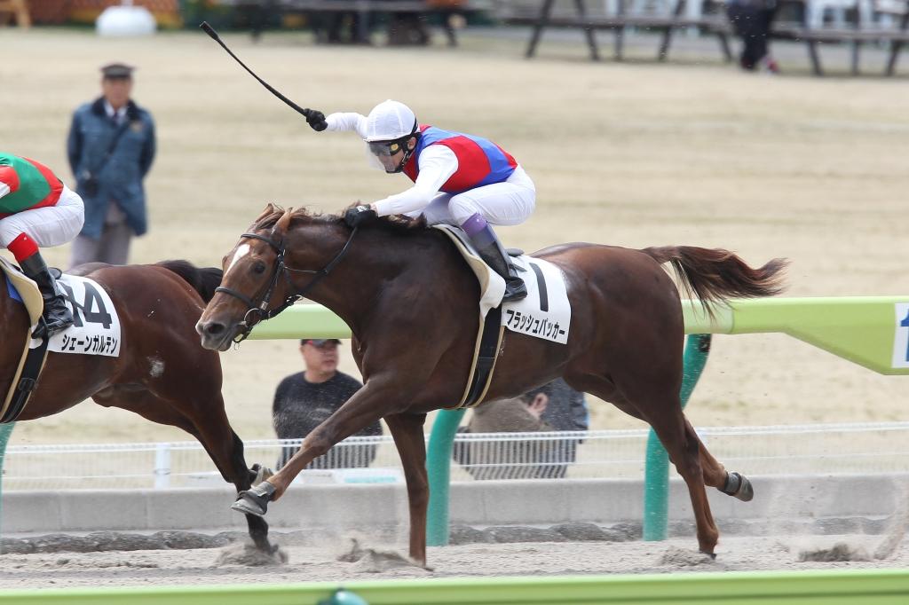 2012年4月21日 福島牝馬S_f0204898_045040.jpg