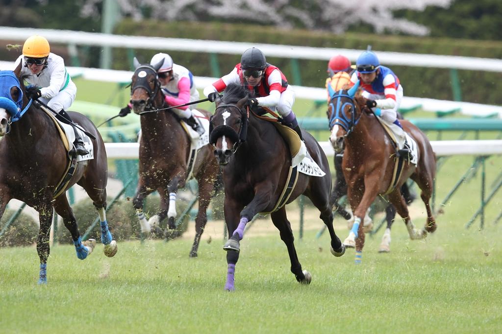 2012年4月21日 福島牝馬S_f0204898_061287.jpg