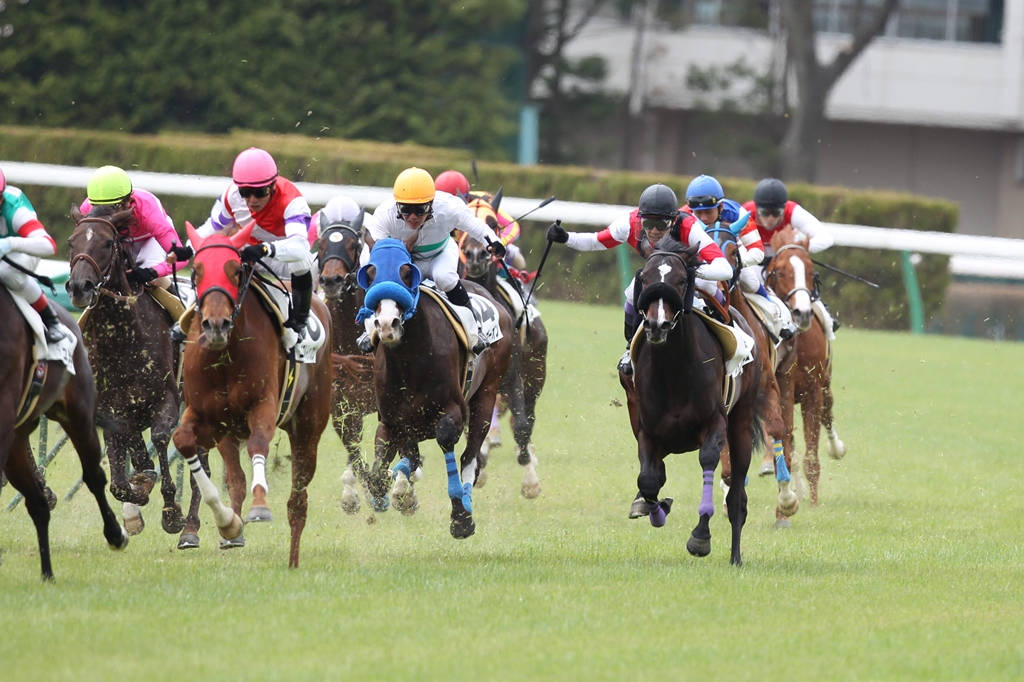 2012年4月21日 福島牝馬S_f0204898_06717.jpg