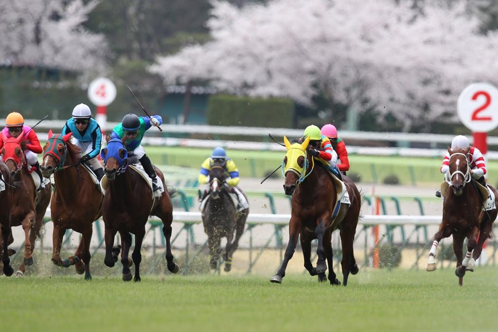 2012年4月21日 福島牝馬S_f0204898_074390.jpg