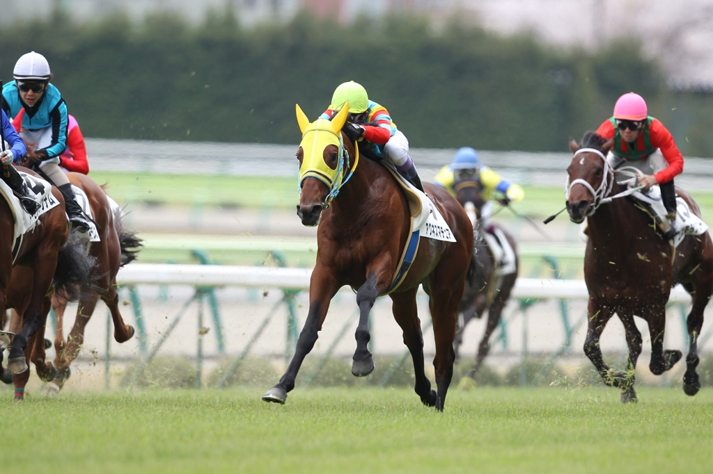 2012年4月21日 福島牝馬S_f0204898_075814.jpg