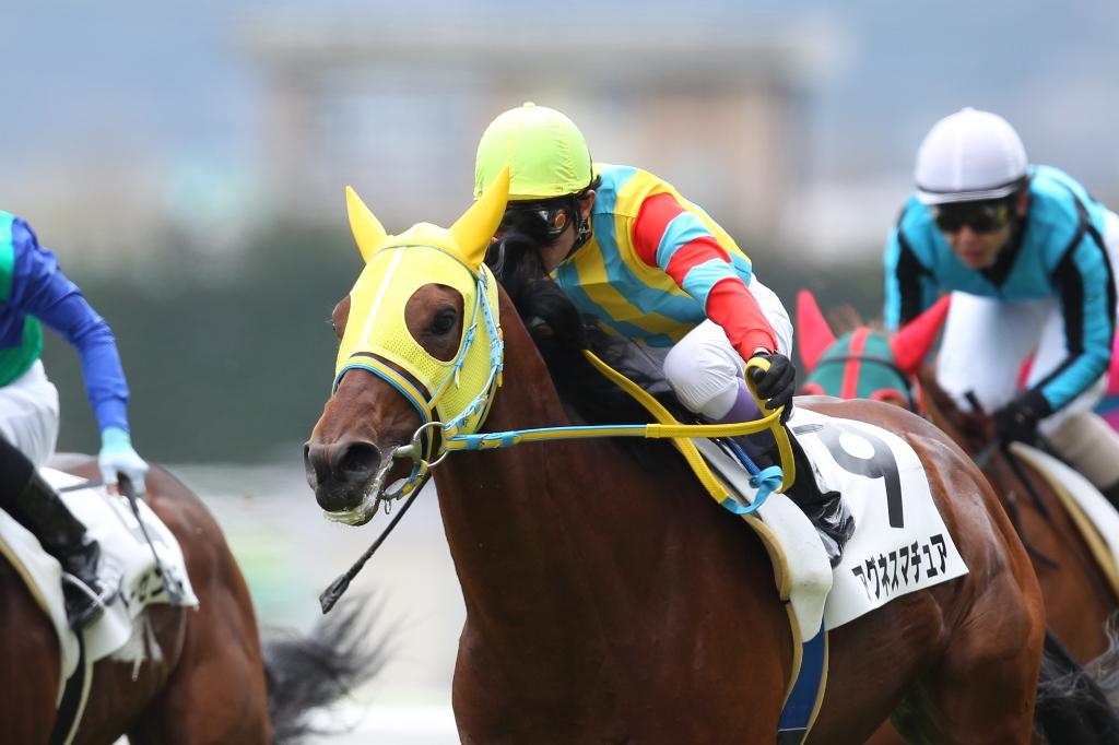 2012年4月21日 福島牝馬S_f0204898_08117.jpg