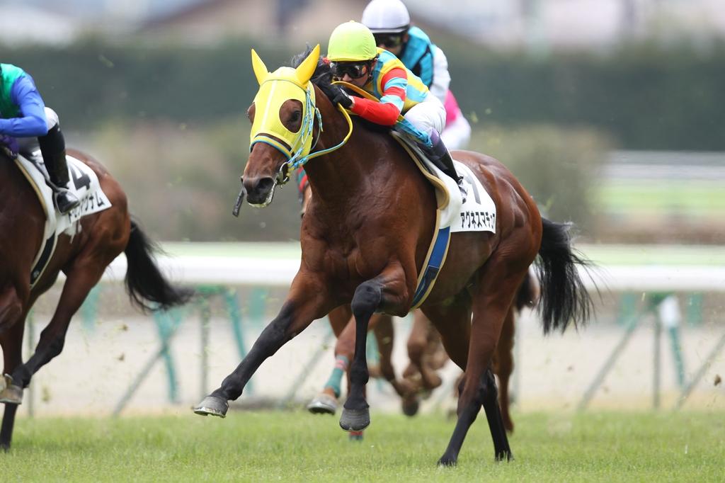 2012年4月21日 福島牝馬S_f0204898_083852.jpg