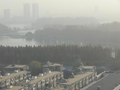 中国出張2010年11月(III)-第五日目-南京-上海高鉄(新幹線)移動_c0153302_183407.jpg