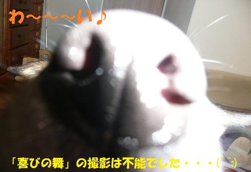 f0121712_160739.jpg