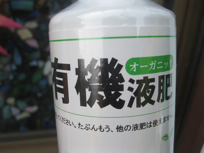 「果実苗」と「長靴」☆_a0125419_1134351.jpg