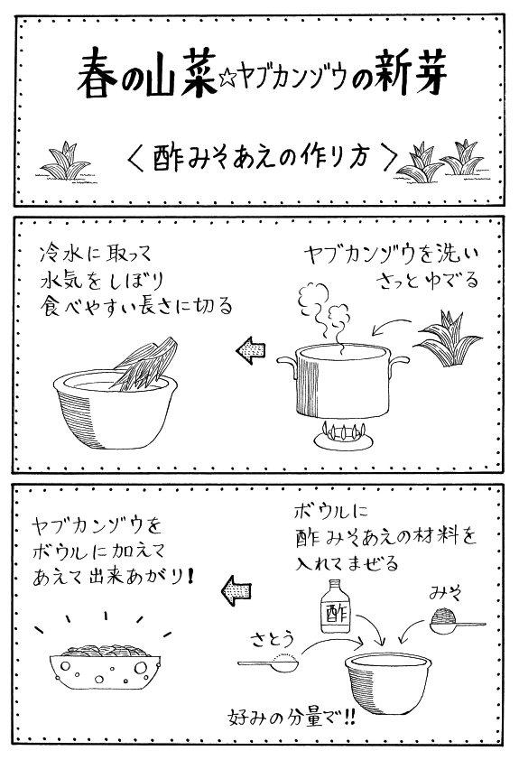 その41 <ヤブカンゾウを食べなくっちゃ!>_a0119520_1348611.jpg