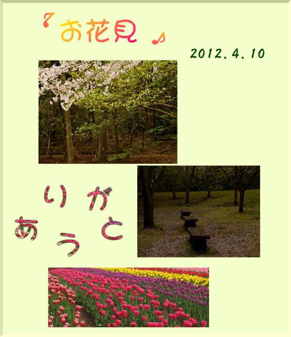 d0155321_5322595.jpg