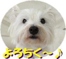 f0084422_14674.jpg