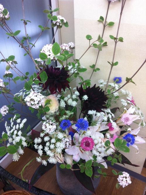 今週のお花とセール情報_a0200423_1953690.jpg
