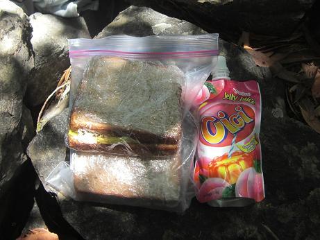 自家製ハムのサンドイッチ。_c0119140_12195842.jpg