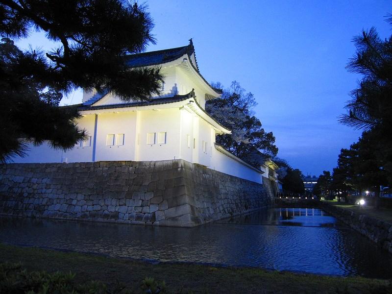 二条城の夜桜_e0237645_14572427.jpg