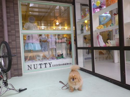 NUTTY Little Room&Deco.opening Reception_e0148852_19254460.jpg