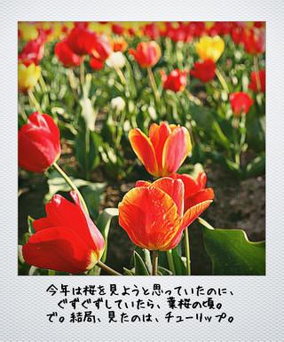 f0232763_022652.jpg