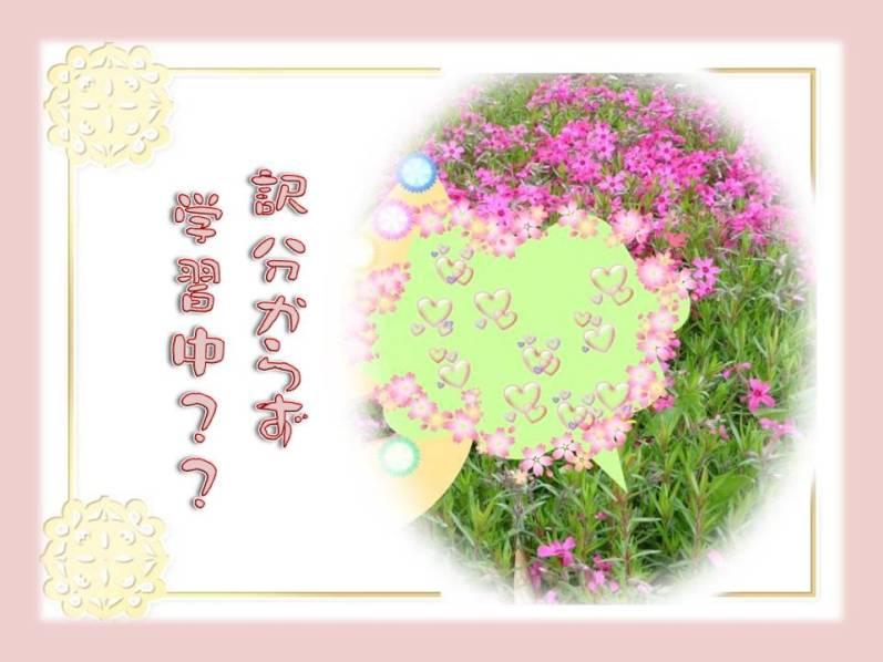 f0214467_6415589.jpg