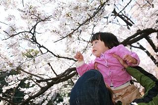 4月8日 屋外撮影会_d0005380_1632875.jpg
