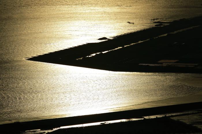 金色に輝くさざ波_e0135098_6353529.jpg