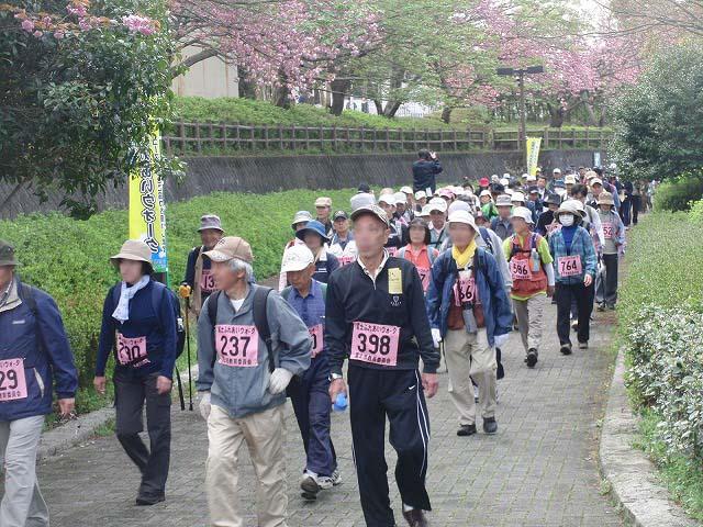 新緑の茶畑を楽しむ「第34回 富士ふれあいウォーク」_f0141310_7493513.jpg