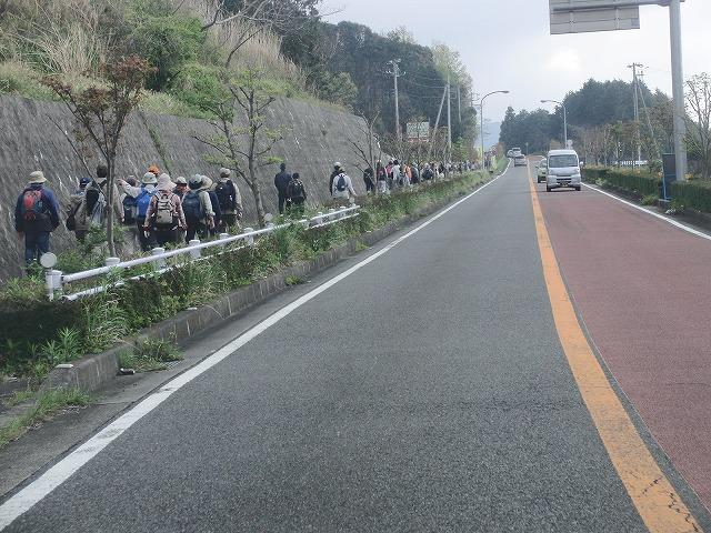 新緑の茶畑を楽しむ「第34回 富士ふれあいウォーク」_f0141310_752478.jpg