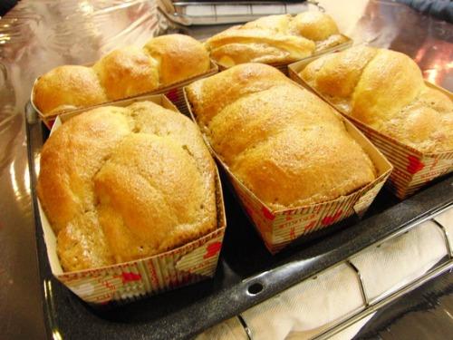 パンレク ~ コーヒークッキーパン ~_e0222340_1737359.jpg