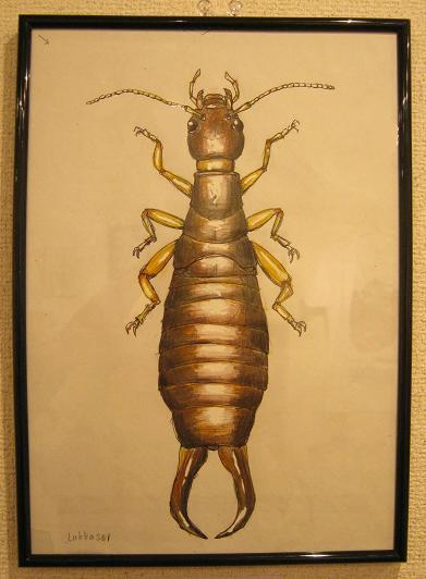 第2回 -mozo mozo-虫・蟲 展 その10_e0134502_17334999.jpg